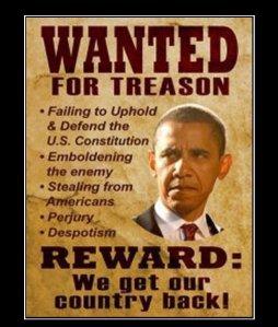 ObamaTreason